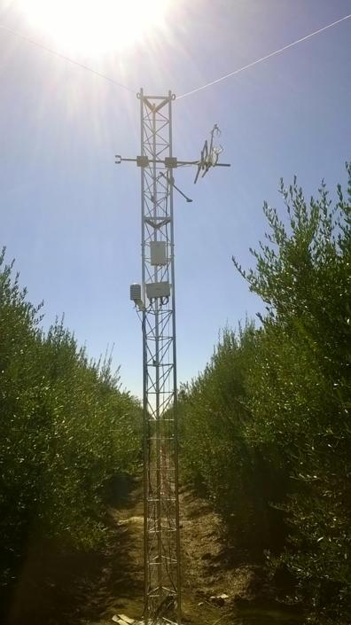 Torre para medição da evapotranspiração rela do olival (método micrometeorológico das flutuações instantâneas)