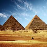 As Azeitonas, as Oliveira e plantações de oliveiras chegaram ao Egito muito antes das pirâmides