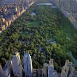Central Park de Nova Iorque – Um parque onde não podem faltar oliveiras