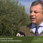 Herdade de Maria da Guarda em Serpa visitada pela TVI