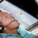 """No espaço também se sabe que a azeitona """"é um pitéu"""""""
