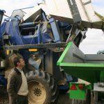 Produção mundial de azeite atinge 3,2 milhões de toneladas. Triplicou desde 1960